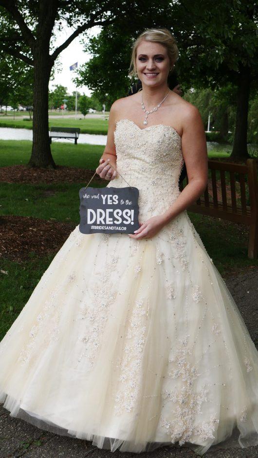 cinderella wedding dress